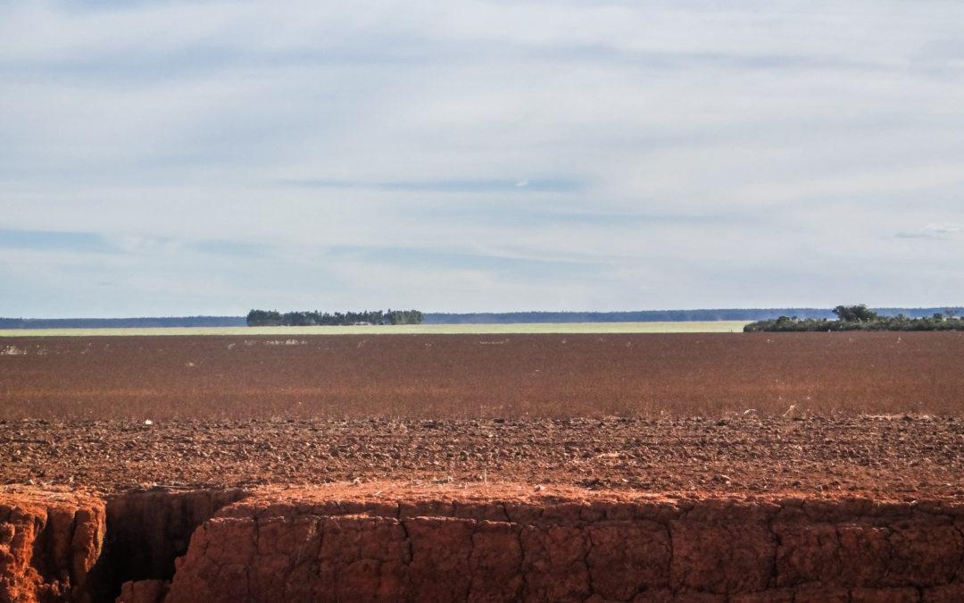 O que professores universitários aposentados de Nova York tem a ver com a expropriação de terras de pequenos agricultores no nordeste brasileiro?